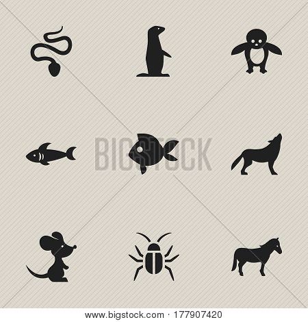 Set Of 9 Editable Animal Icons. Includes Symbols Such As Serpent, Groundhog, Shark And More. Can Be Used For Web, Mobile, UI And Infographic Design.