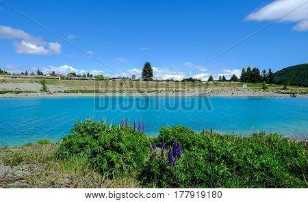 Landscape Of Lake Tekapo, New Zealand