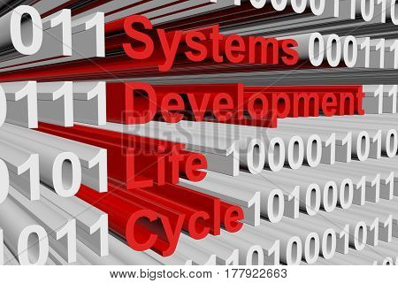 Systems development life cycle in the form of binary code, 3D illustration