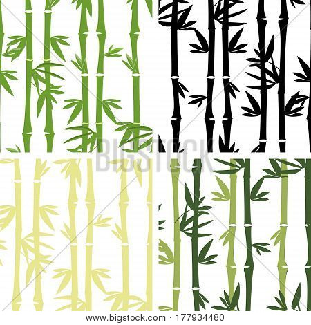 Vector illustration collection of four seamless bamboo pattern. Bamboo tree leaves branches