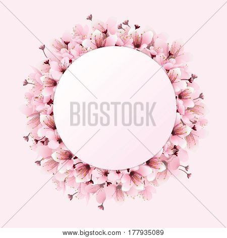 Circle of cherry blossoms, sakura sweet pink flowers with circle frame for copy-space. Image of springtime. Vector illustration.