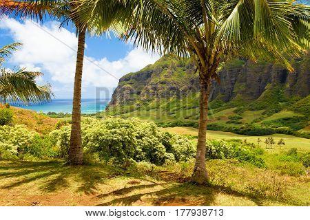 Hawaii  Ka a awa Valley isle of oahu