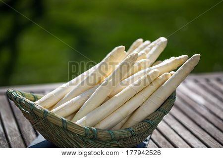 Asparagus white asparagus in basket garden in background
