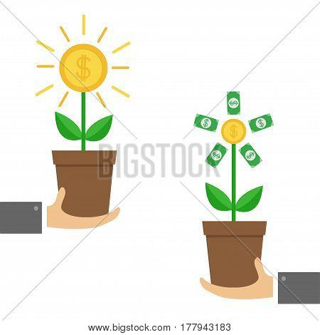 Businessman hands holding Growing paper money tree shining coin with dollar sign Plant in the pot. Financial growth concept. Successful business icon set. Flat design. White background Isolated Vector