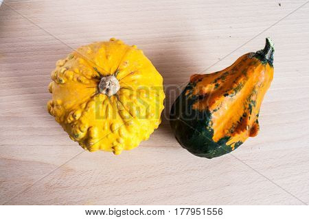 Two nice decorative pumpkins. Yellow and orange autumn vegetables on wooden board