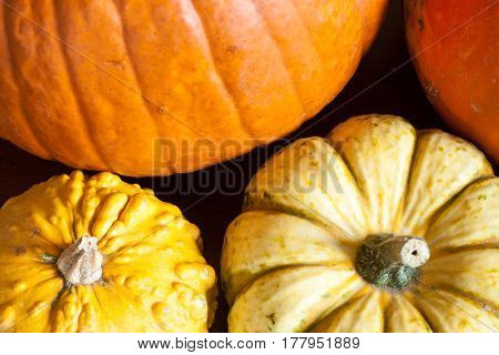 Composition Of Colorful Pumpkins And Squashes In A Kitchen On A Wooden Table