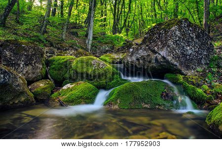 Mountain Stream With Stones With Clear Water.