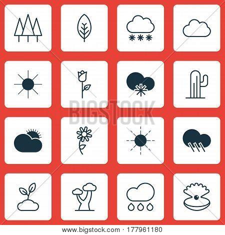 Set Of 16 Harmony Icons. Includes Oak, Cactus, Rain And Other Symbols. Beautiful Design Elements.