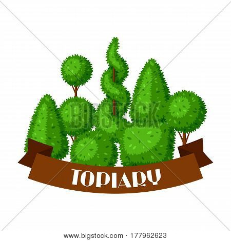 Boxwood topiary garden plants. Background with decorative trees.