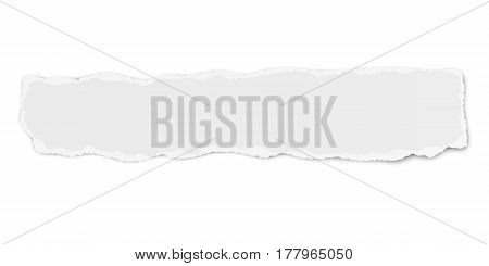 Vector oblong paper tear wisp with soft shadow isolated on white background