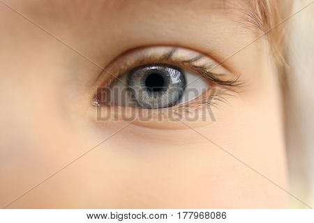 Blue-eyed little child, closeup