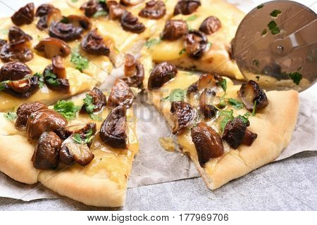 Homemade pizza with mushrooms on light background close up