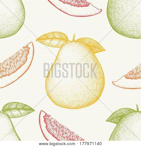 Ink hand drawn pomelo background. Vector seamless patern with highly detailed citrus fruits