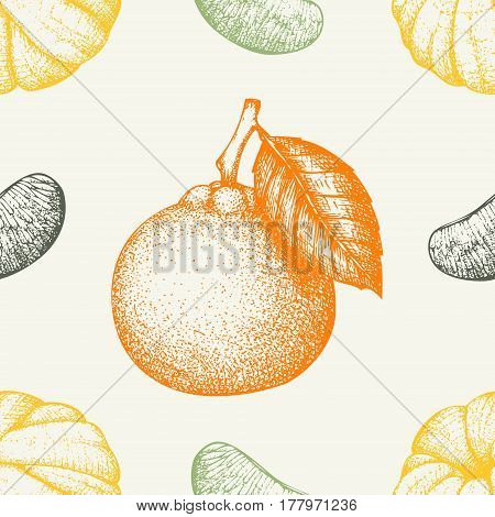 Ink hand drawn tangerine background. Vector seamless patern with highly detailed citrus fruits