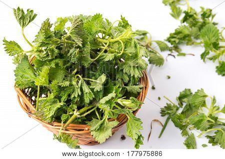 Stinging Nettle Green Leaves In A Wicker Basket