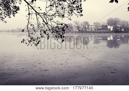 Autumn landscape with river in haze. Branches over water with autumn leaves in early morning. Toned black and white photo. Large film grain