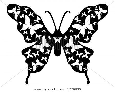 Butterfly Floral Background Designer Ornamental Art 9