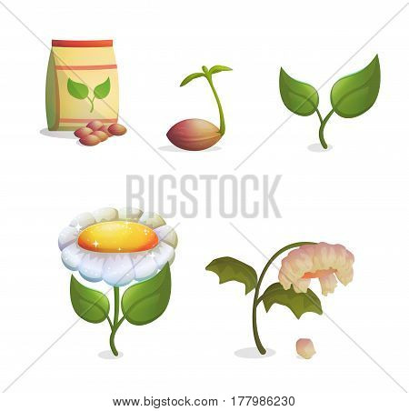 A collection of objects showing flower growing stages, seeds and a paper bag, growing sprout, flowering and fading withering plant. Game and app ui icons.