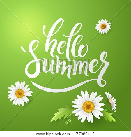 Hello Summer handmade lettering and realistic daisy, camomile flowers on green background.
