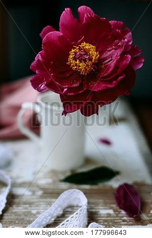 red peony flower in white cup on table