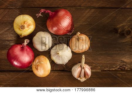 Garlic and onion bulbs, shot from above on a dark wooden background texture, with a place for text