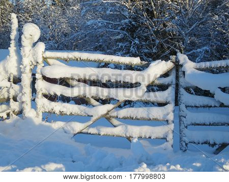 A snow covered gate that leads to the garden.