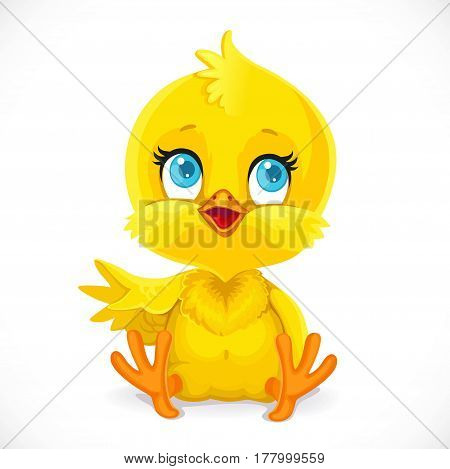 Cute Baby Chick Sit On A White Background