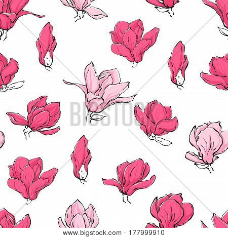Seamless pattern with hand drawn vector magnolia flowers in sketch line style with color. Isolated pink blossom on white background..
