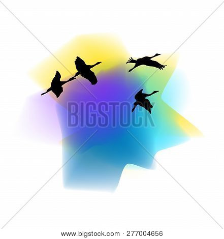 Silhouettes Of Cranes. Silhouettes Of Cranes Against The Sunset Background. Cranes Birds. Silhouette