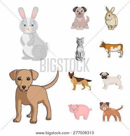 Vector Illustration Of Animal And Habitat Sign. Collection Of Animal And Farm Vector Icon For Stock.