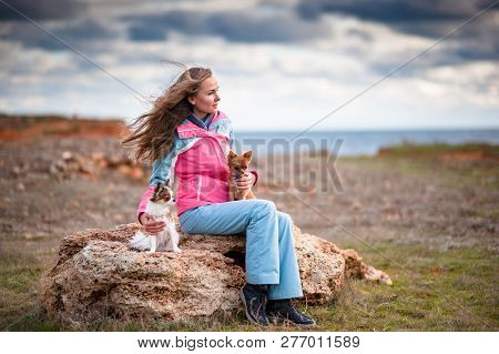 Pretty Young Woman In Track Suit Sitting With Two Chihuahua Dogs Near Sea Shore In Cold Weather Spri