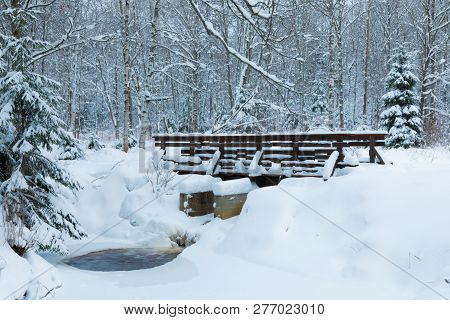 The Landscape Of The Brook And The Footbridge In The Beautiful Winter Forest Or In The Park Among Th