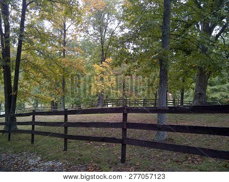 Peaceful Wooded Area Just Beyond A Wooden Fence Alongside A Road In Kentucky.