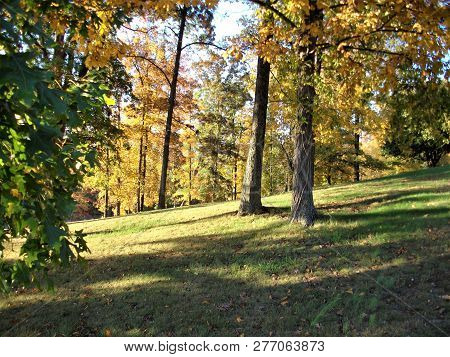 Early Autumn Afternoon On A Hillside In Rural Kentucky
