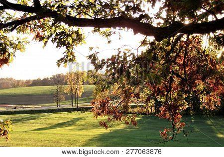 Sunshine Through Autumn Leaves On An Autumn Afternoon In Rural Kentucky.