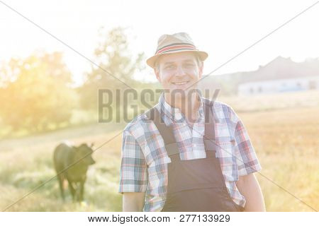 Portrait of smiling mature farmer standing against cows at farm with strong lens flare