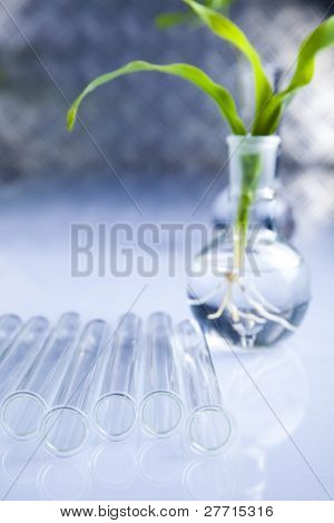 Laboratory and plant
