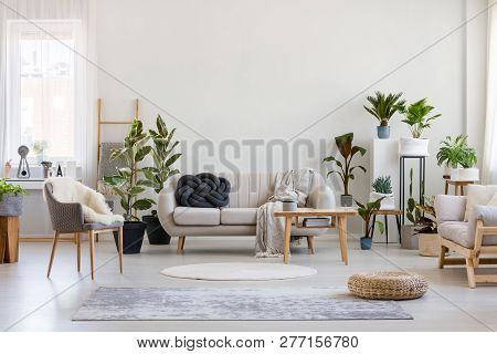Urban Jungle In Bright Living Room Interior With White Couch With Knot Pillow And Wooden Furniture,