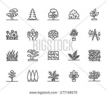 Trees Flat Line Icons Set. Plants, Landscape Design, Fir Tree, Succulent, Privacy Shrub, Lawn Grass,