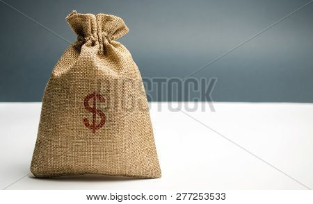 Money Bag With A Dollar Sign. Family Or Company Budget Concept. Income And Profit. The Accumulation