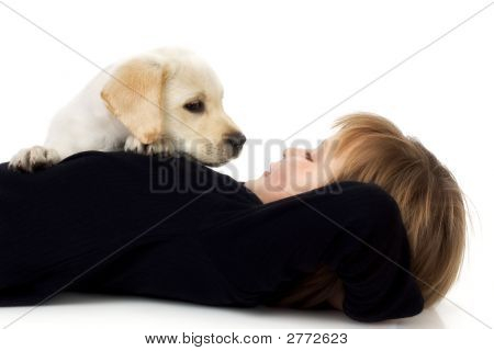 Child with Labrador retriever puppy; white background poster