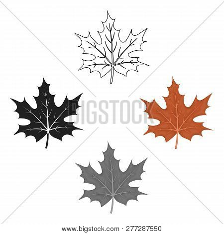 Maple Leaf Icon In Cartoon Style Isolated On White Background. Canadian Thanksgiving Day Symbol Stoc