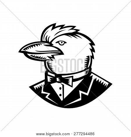 Retro Woodcut Style Illustration Of Head Of Kookaburra, A Terrestrial Tree Kingfisher Of Genus Dacel