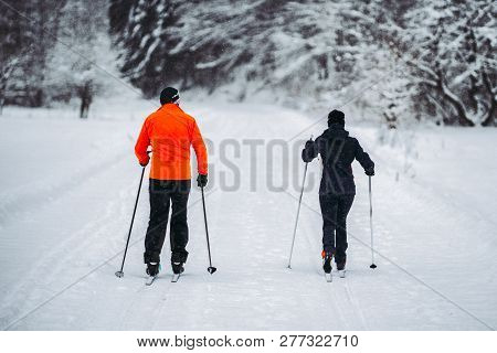 People Doing Cross Country Skiing In Winter Forest