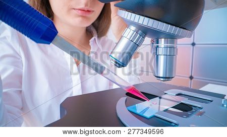 Scientist analyzing microscope slide at laboratory. Young woman technician is examining a histological sample, a biopsy in the laboratory of cancer research poster