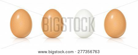 Set Yellow And White Shell Eggs. Product For Cooking Breakfast. Organic Food. View Realistic Raw Nat
