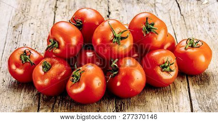 Fresh Tomatoes On An Old Wooden Table. Growing Of Fruits And Vegetables. Healthy Food. Raw Vegetaria