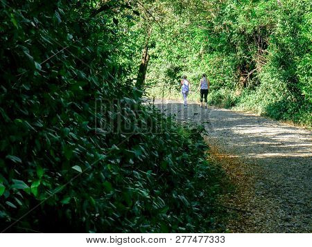 Two Women Walking On An Unpaved Road In The Morning In The Middle Of The Forest