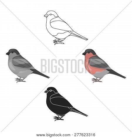 Bullfinch Icon In Cartoon Style Isolated On White Background. Bird Symbol Stock Vector Illustration.