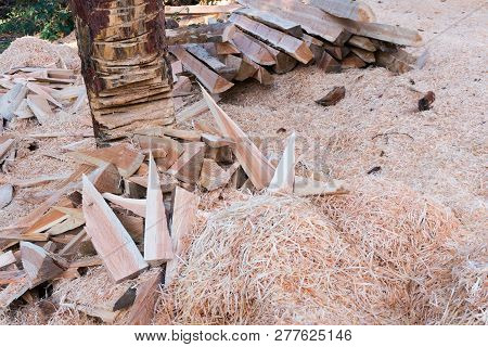Place For Cutting And Chopping Wood Outoors With Wood Shavings And Logs And Pieces Of Wood